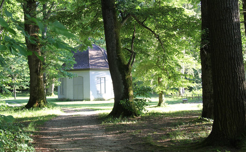Ile de Saint-Pierre Erlach